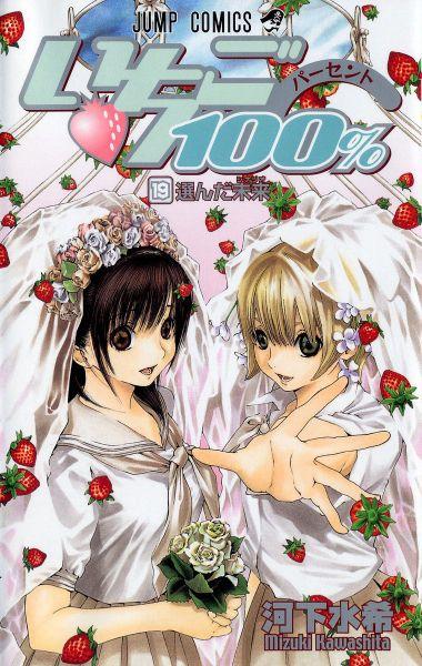 Ichigo 100% vol 19